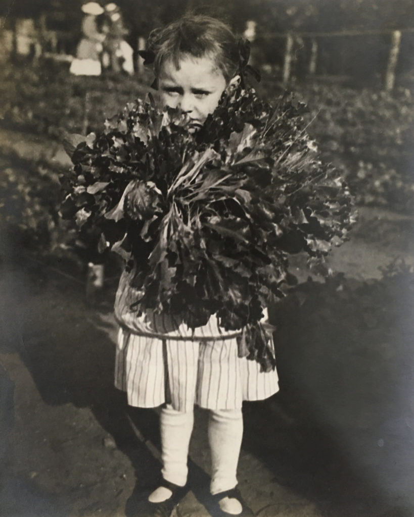 "A photo taken of a young gardener at the Railroad Mission's garden at 39th and Vincennes, July 8, 1916. The back of the original contains the following note: ""A little gardener with a big load."""