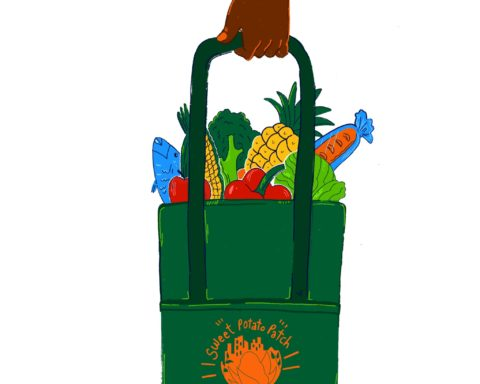 Illustration of a canvas grocery bag full of fresh food.